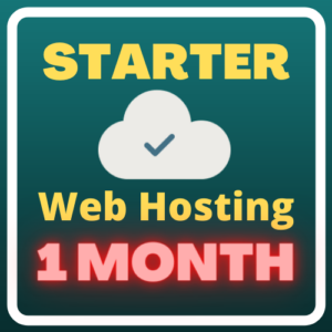 Starter Web Hosting (1 month)